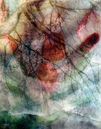 fragment 1 - Dean Pasch